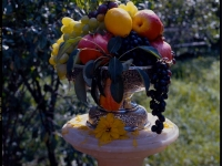 Кубок фруктов